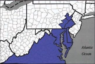 Merger btwn Mid-Atlantic and Metropolitan Regional Councils