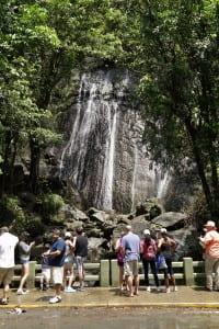 La Coca waterfall at El Yunque Rain Forest
