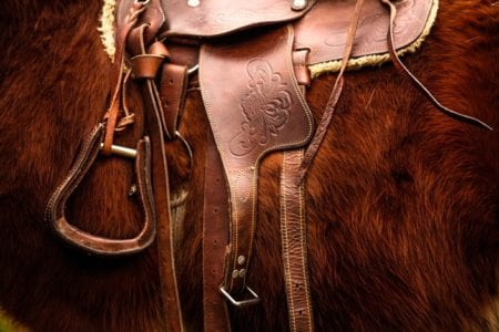 Western States Horse Expo Shows Strength of Equine Industry