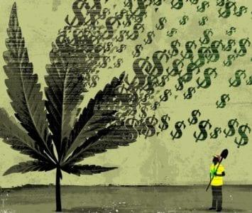 maryjane money