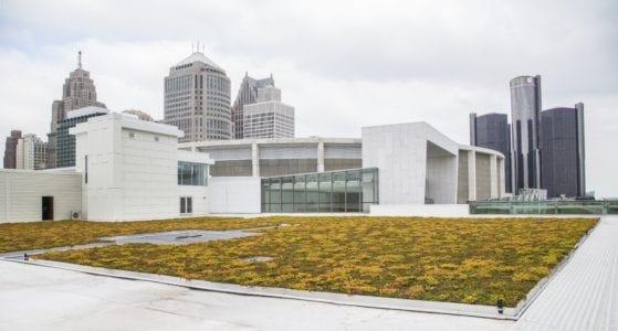 Cobo Center Living Green Roof (1024x550)