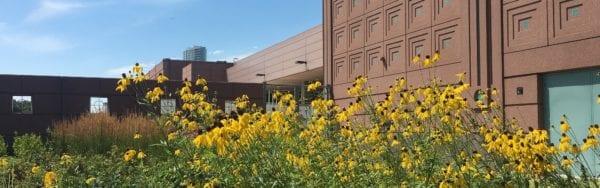 Minneapolis Convention Center Awarded Prestigious LEED Green Building Certification